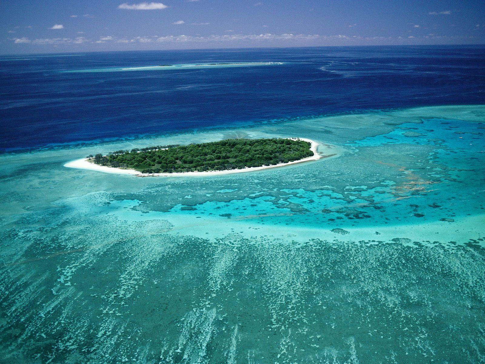 Zone del Pianeta in pericolo: la grande barriera corallina in Austrialia