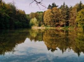 Parco Regionale Boschi di Carrega