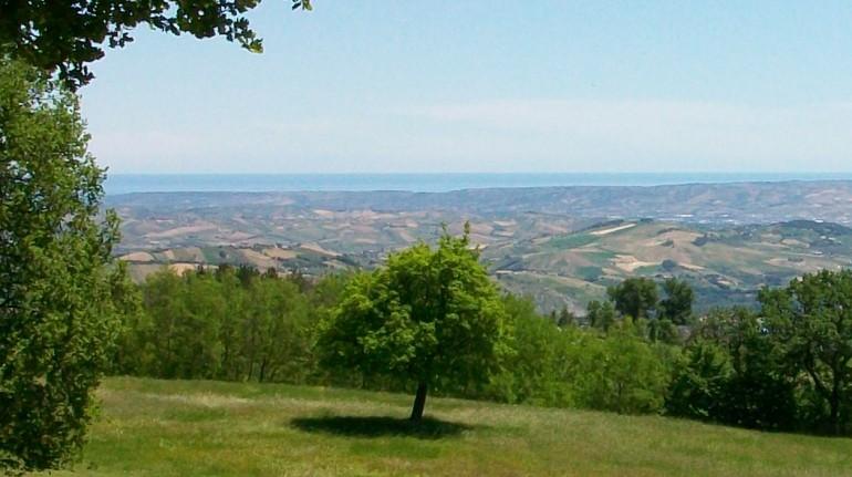Il giardino e la vista di Casa Vacanza Il Bosco dei Daini