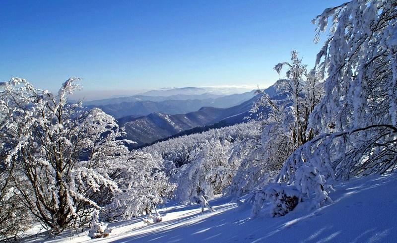 Parco Naturale delle Foreste Casentinesi