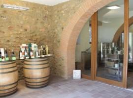 fattoria didattica e agriturismo Corte degli ulivi, Maremma