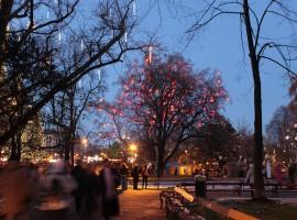 Luci natalizie a Vienna