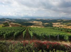 I panorami dal Monte Amiata