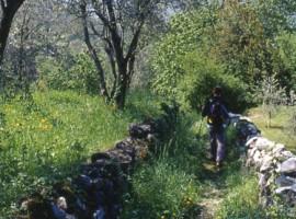 Sentiero de Viandante