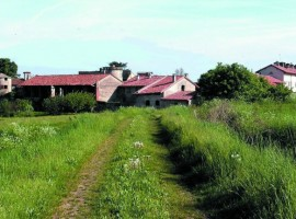 Cascina Santa Brera, per una vacanza in fattoria vicino a Milano