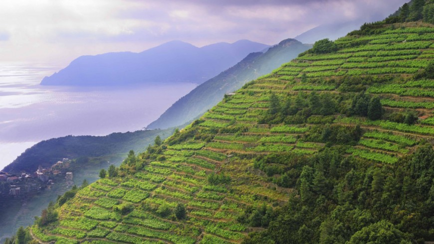 Panorami della Liguria