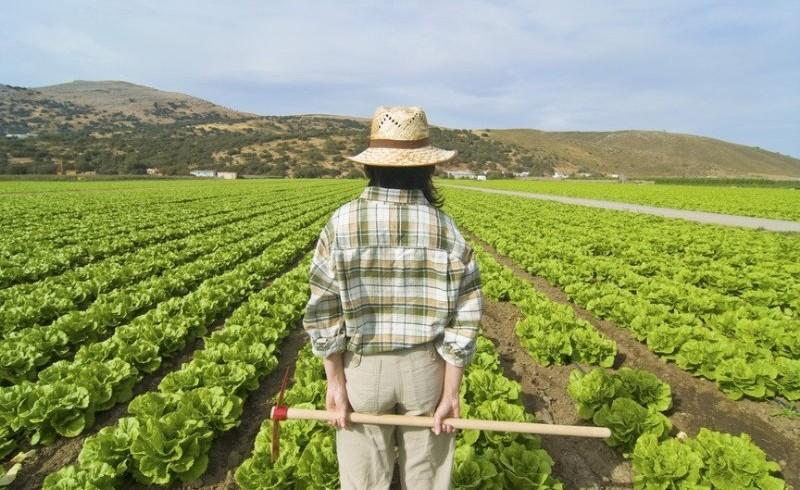 Ragazzi e agricoltura, una contadina