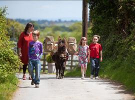 Camminare con un asino in Irlanda