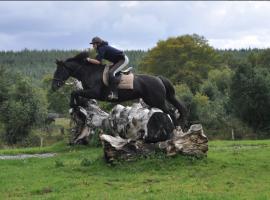 Vacanze a cavallo con The Three Towers Eco House & Organic Kitchen, il posto perfetto dove dormire in Irlanda