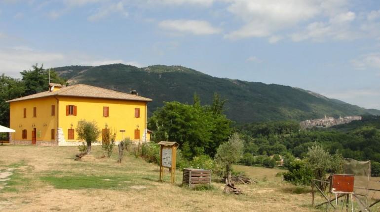Fattoria Biologica La Sonnina per una vacanza in fattoria nel Lazio