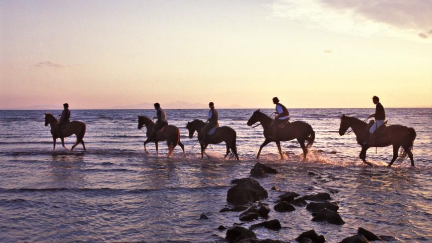 Vacanze a cavallo nel mare della Maremma