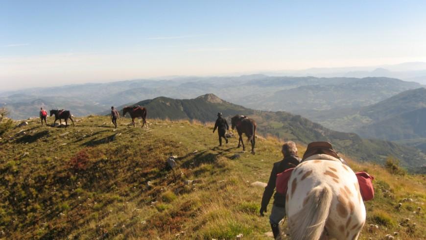 Vacanze a cavallo negli Appennini bolognesi