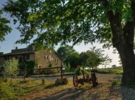 Agriturismo Biologico Sant'Egle, vacanza in fattoria in Toscana