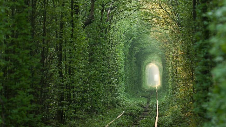 Tunnel of Love in Ucraina, uno dei viaggi in treno più romantici del mondo