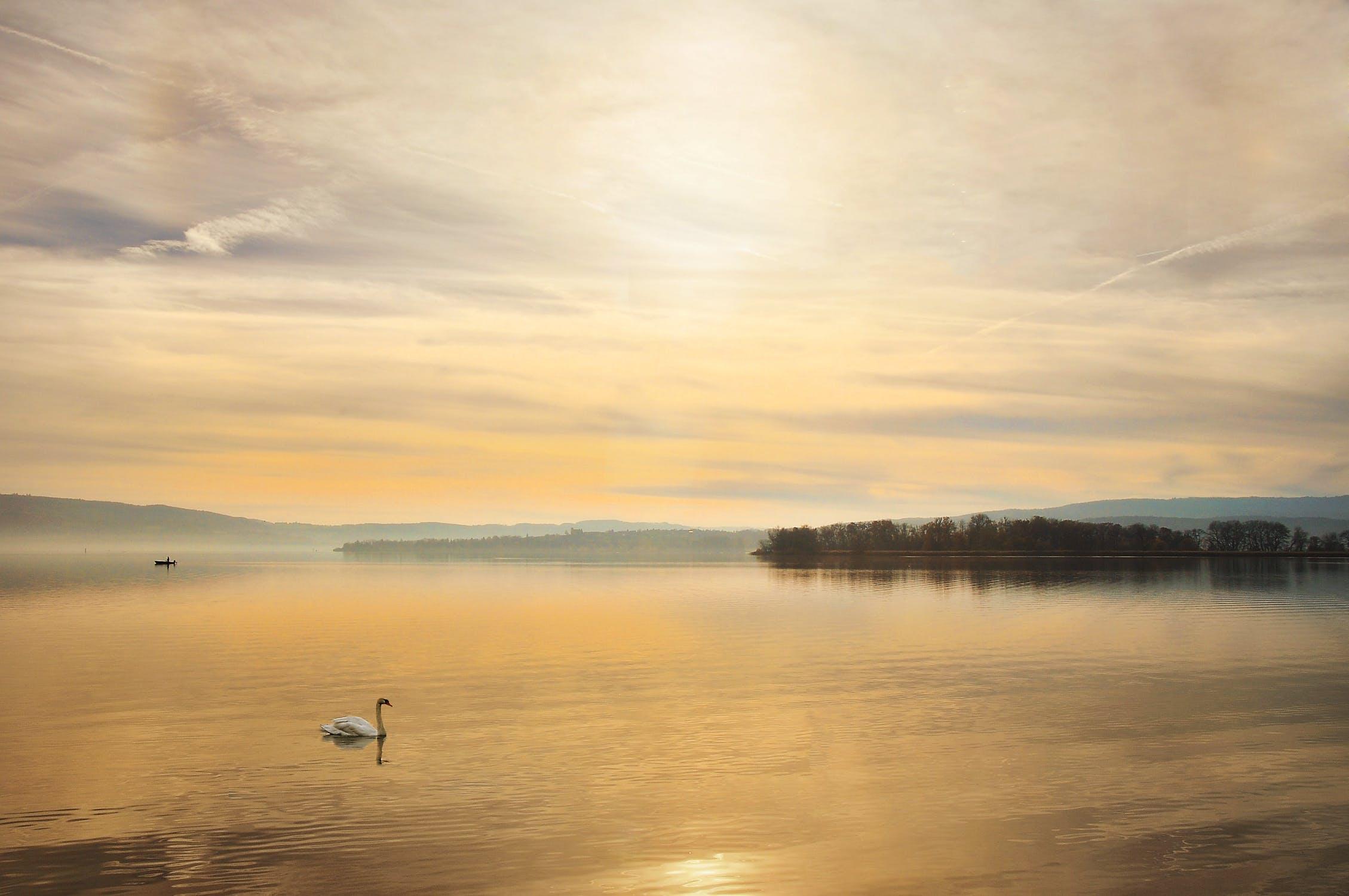 Ciclabile attorno al lago di Costanza
