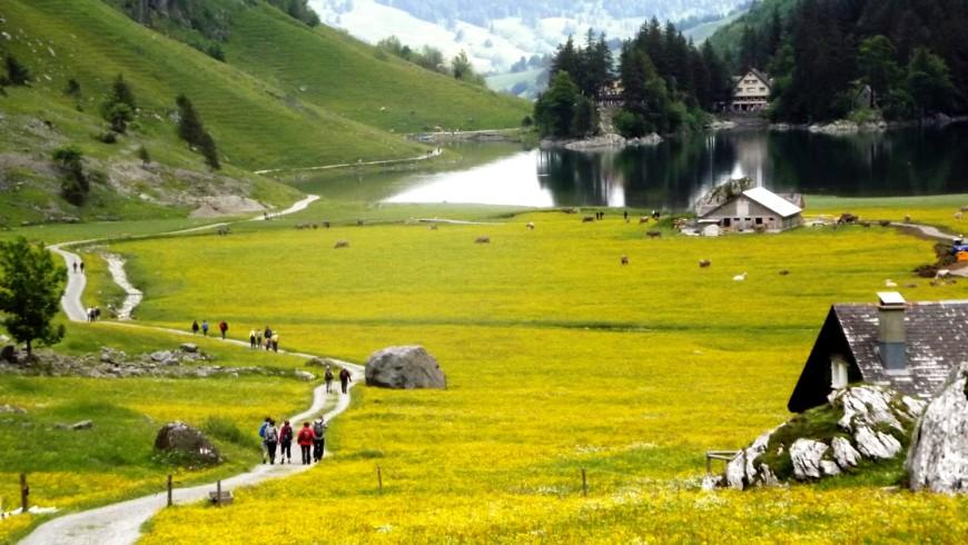 In treno verso l'Appenzell, Svizzera