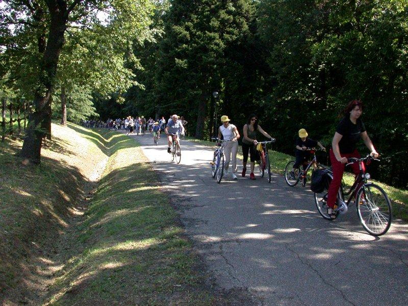 In bicicletta al Parco dei boschi di Carrega, Parma