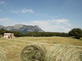 Una malga in Trentino per festeggiare la festa della mamma