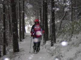 Parco Nazionale dei Monti Sibillini