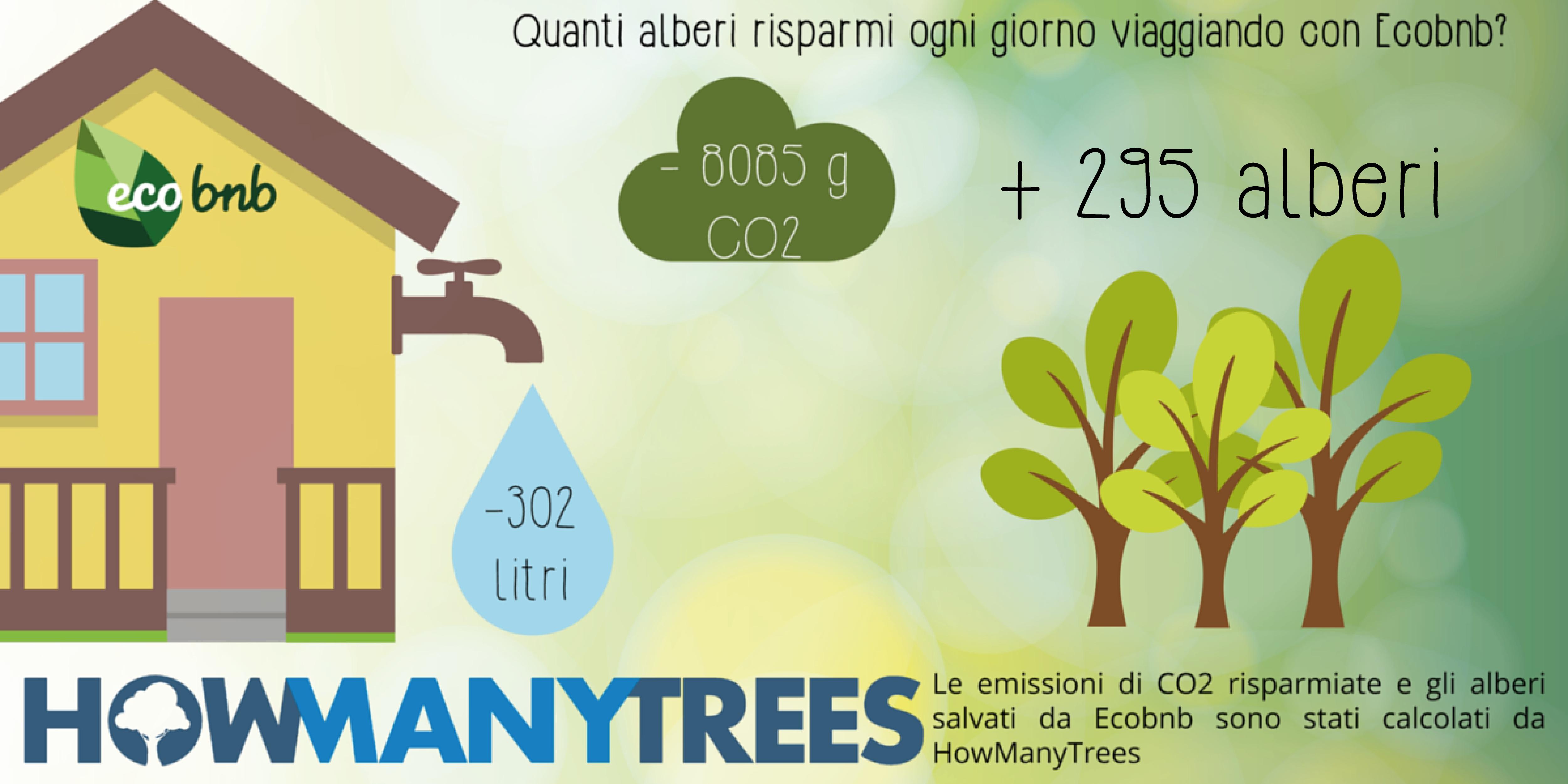 Quanti alberi e quanta co2 puoi risparmiare ogni giorno con Ecobnb?