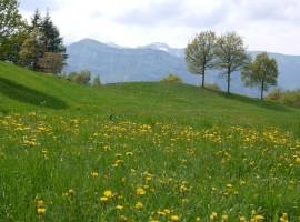 Parco della Lessinia