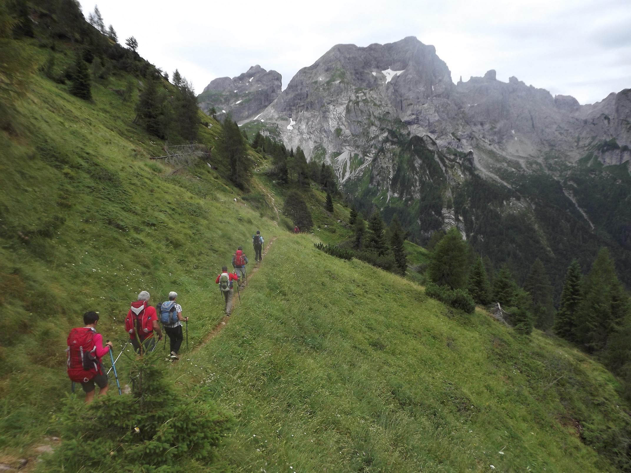 I Parchi delle Alpi in treno – Trekking nel Parco Nazionale Dolomiti Bellunesi