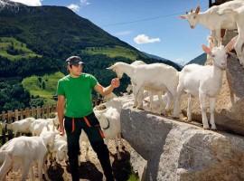 Valle Aurina, Helmut e le sue capre