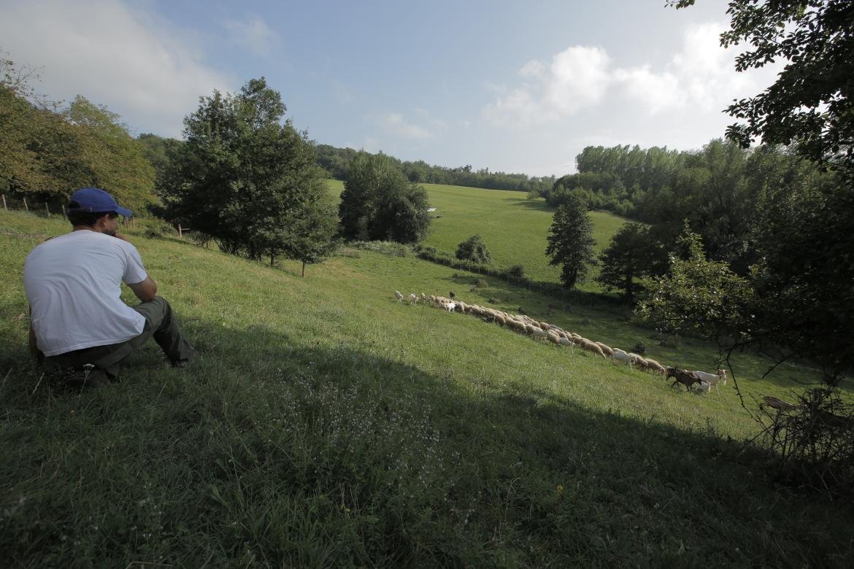 I pascoli di Amaltea, Alessandro e Arianna, contadina innovativa