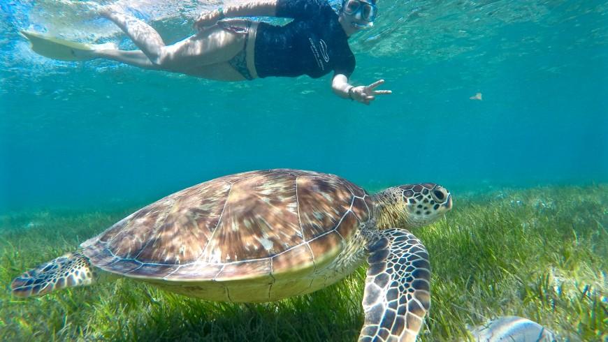 Valeria di Buongiorno World nuota nella barriera corallina