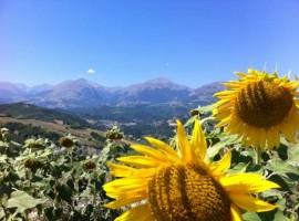 Vista sui Monti Sibillini da La Querceta di Marnacchia