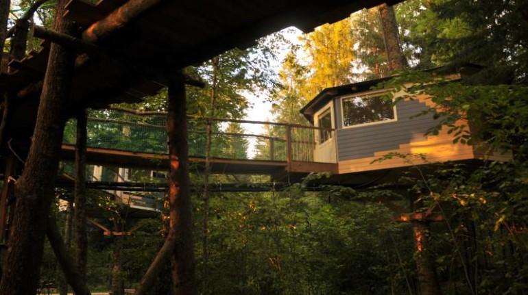 Les Nids, case sugli alberi in Svizzera