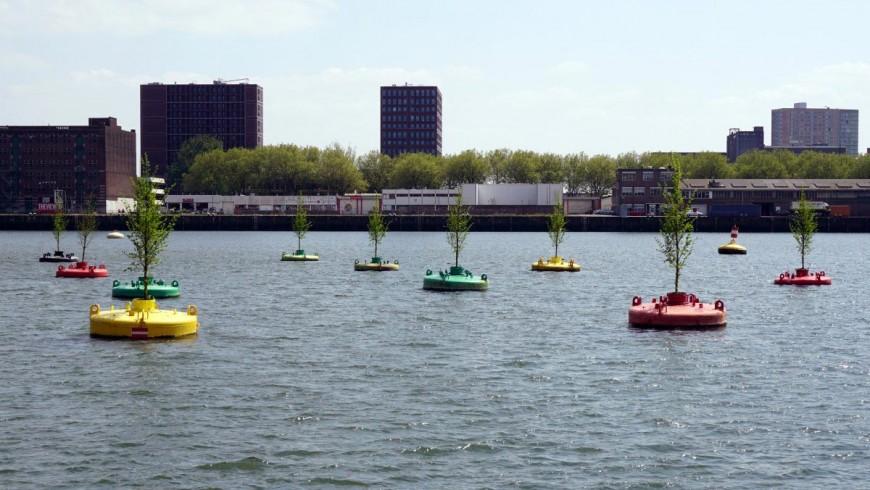 Rotterdam, un bosco galleggiante per salvare gli alberi. È la Bobbing Forest