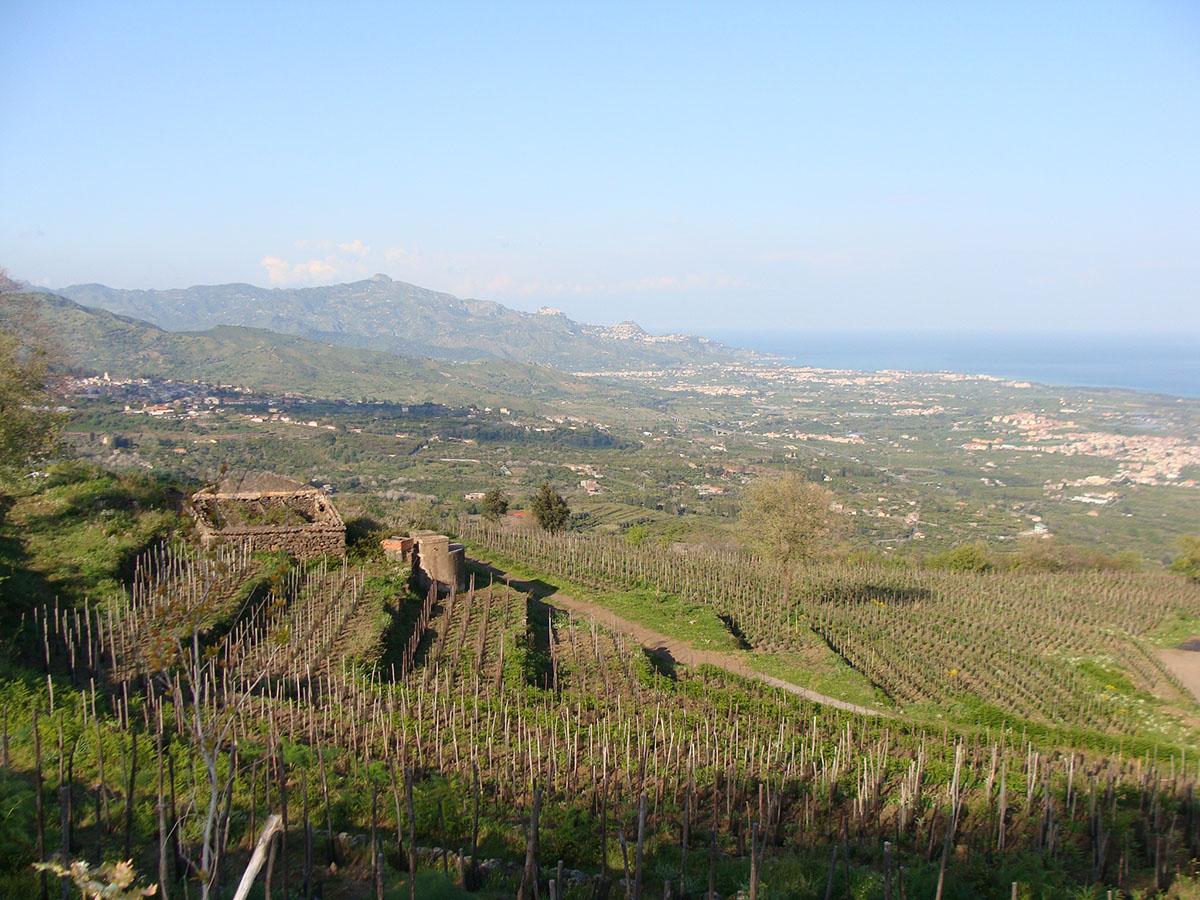 paesaggio_agricolo_bagolarea