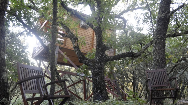 Ecolodge de Habaneros, case sugli alberi in Spagna