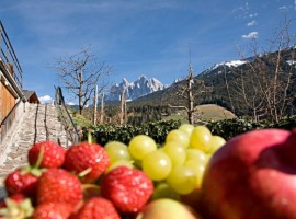 Appartamento Schatzer, Trentino Alto Adige