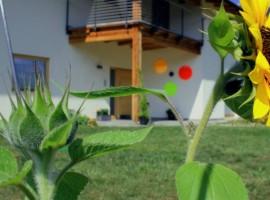 Bio B&B Mondino in Trentino Alto Adige