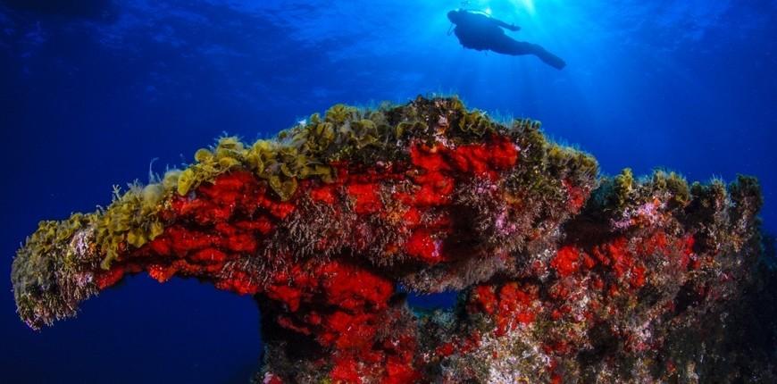 El Hierro, l'isola 100% sostenibile delle Canarie