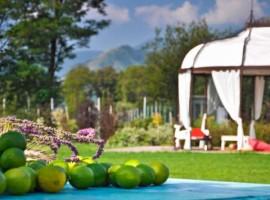 Bella Rosina, Relais Le Betulle, Hotel eco-sostenibile e di lusso in Piemonte