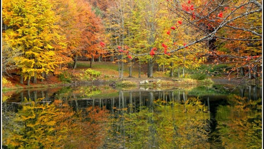 Foliage nel Parco Corno alle Scale