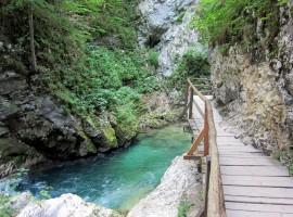 Gole di Vintgar, Bled