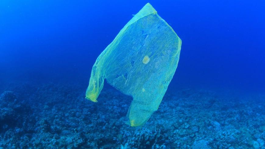 Come ridurre rifiuti ed imballaggi