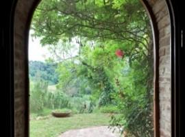 Gli eco-hotel per scoprire le meraviglie del bosco