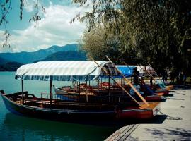 Caratteristiche barche di Bled