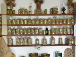 Acquisti biologici nel Salento