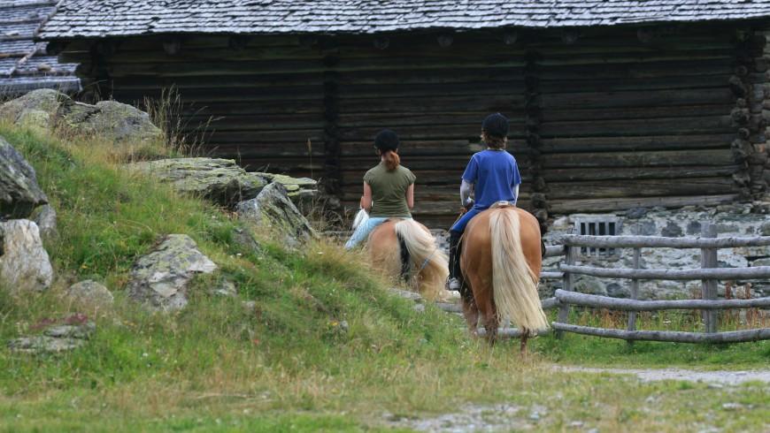 Itinerario a Cavallo nella natura incontaminata di Plan, perla Alpina in Val Passiria, Alto Adige