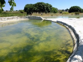 le bellissime piscine naturali e terme libere del Bullicame, Viterbo