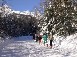 Forni di Sopra, vacanze sostenibili nel cuore della Carnia