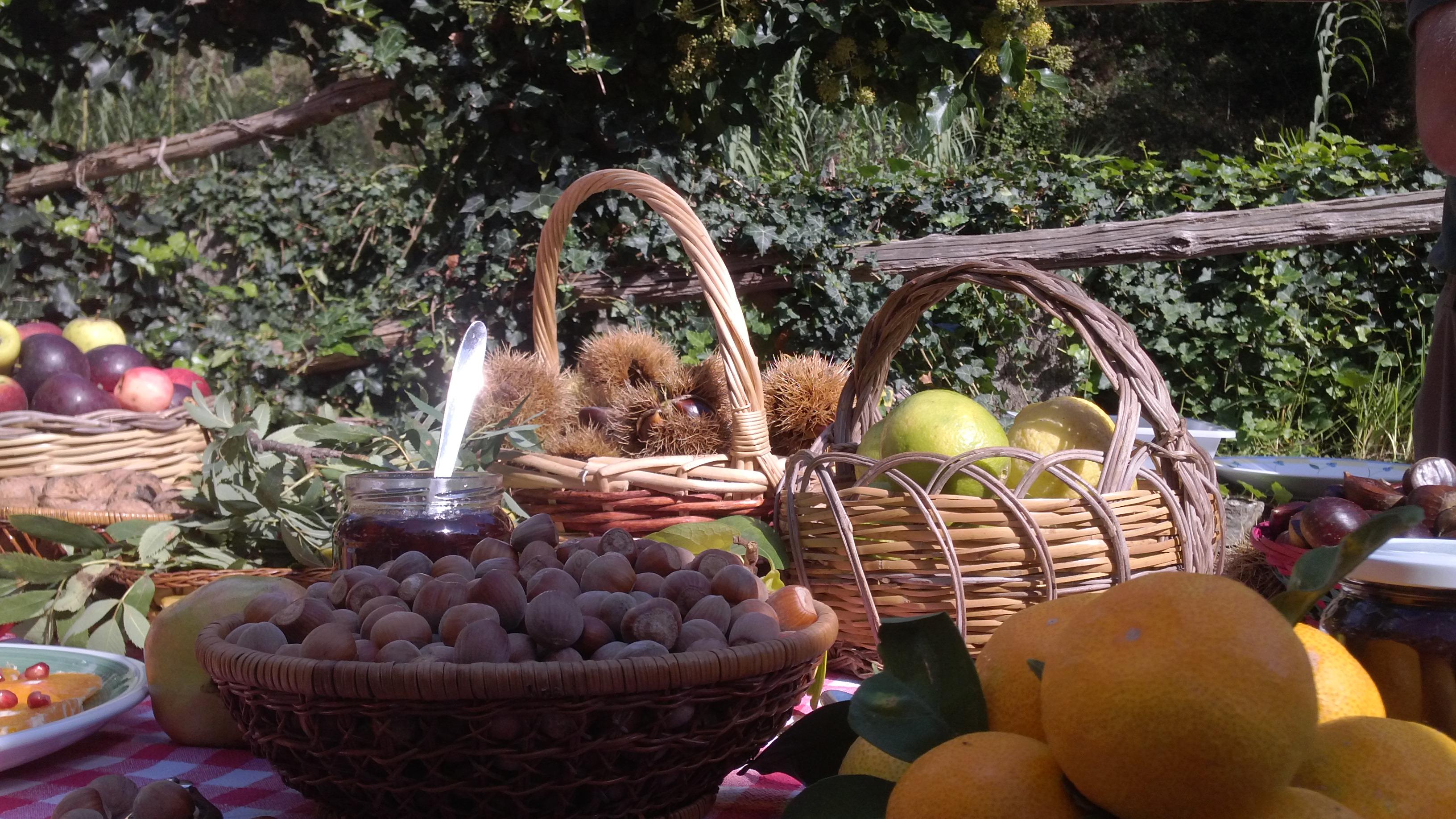 Frutta e marmellate