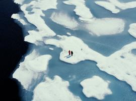 before the flood un film sui cambiamenti climatici