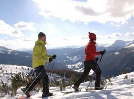 A piedi con le racchette da neve tra le Alpi